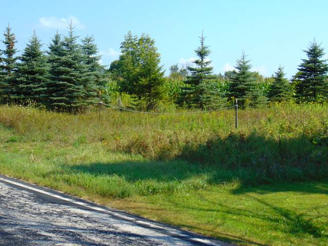 Lt0 County Road A West, Mitchell, WI 53011 (#1768200) :: RE/MAX Service First