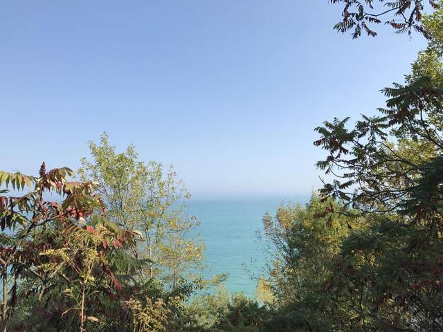 12360 N Lake Shore Dr, Mequon, WI 53092 (#1768377) :: Tom Didier Real Estate Team