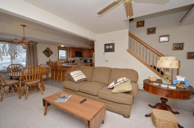685 N Cogswell Dr #3, Silver Lake, WI 53170 (#1595922) :: Tom Didier Real Estate Team