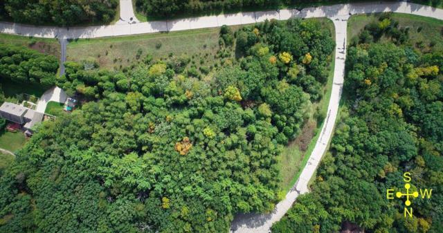 Lt4 Pine Ridge Ct, Ottawa, WI 53118 (#1607961) :: Tom Didier Real Estate Team