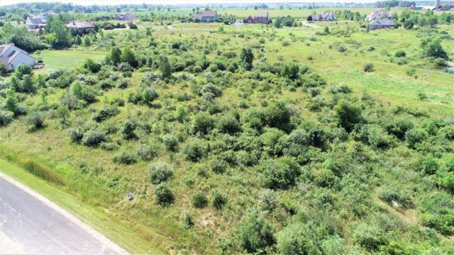 5216 Lower Lakeview Ridge Rd, Belgium, WI 53004 (#1633367) :: Tom Didier Real Estate Team