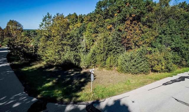 Lt2 Pine Ridge Ct, Ottawa, WI 53118 (#1675908) :: OneTrust Real Estate