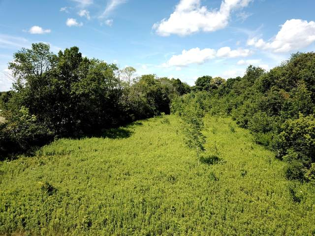 Lot 23 Rooster Ct, Richfield, WI 53017 (#1701406) :: RE/MAX Service First Service First Pros
