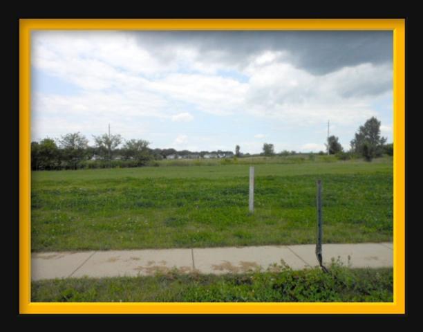 519 E Clancy St, Jefferson, WI 53549 (#1326722) :: Tom Didier Real Estate Team