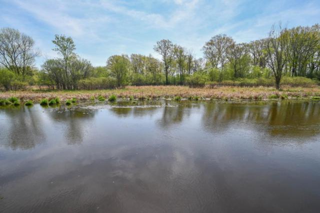 1780 Bark River Dr, Delafield, WI 53029 (#1582600) :: Vesta Real Estate Advisors LLC