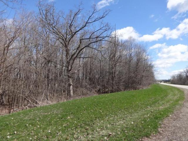 Lt9 Ridge Ln, Rochester, WI 53105 (#1624651) :: Tom Didier Real Estate Team