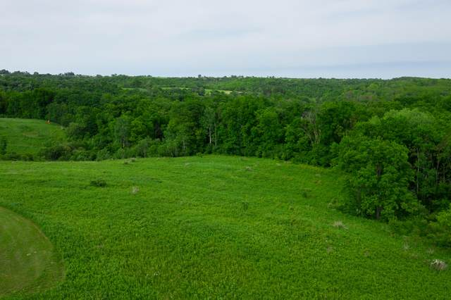 0000 Willow Ln Lot 10, Franklin, WI 54665 (#1680041) :: OneTrust Real Estate