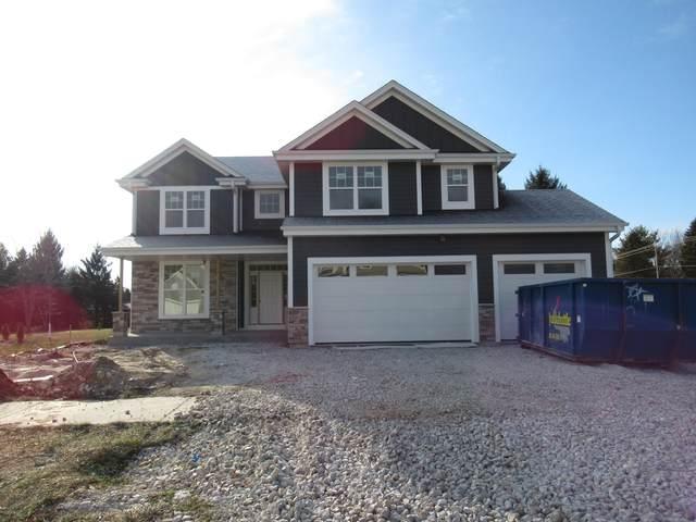 N54W23993 Johanssen Ct, Sussex, WI 53089 (#1707127) :: Tom Didier Real Estate Team