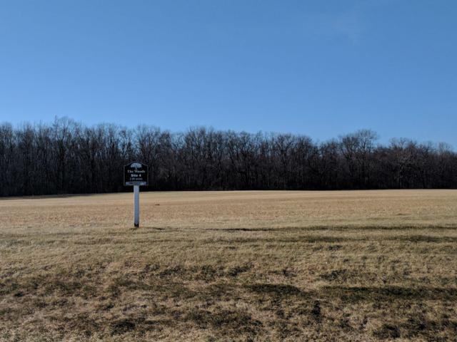Lt4 Majestic Way W, Twin Lakes, WI 53181 (#1513976) :: Tom Didier Real Estate Team