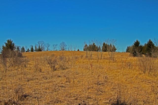 Lt 9 Sherman Ct, Cedarburg, WI 53012 (#1571693) :: Tom Didier Real Estate Team