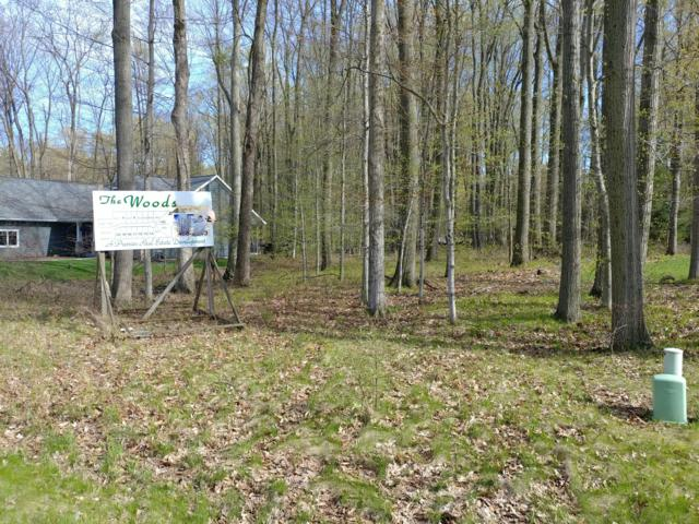 Lot 15 Wood Ct, Wilson, WI 53081 (#1298808) :: RE/MAX Service First Service First Pros