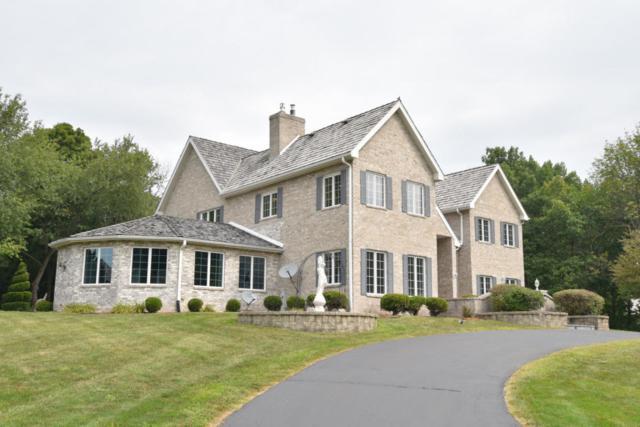 N11W29921 Saint James Way, Delafield, WI 53188 (#1601456) :: Vesta Real Estate Advisors LLC