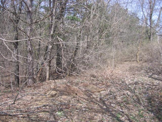 Lot6 Blk 5 Grand View Dr, Whitewater, WI 53190 (#1135035) :: Tom Didier Real Estate Team