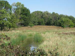 13 Parcels Wiley Rd, Lebanon, WI 53098 (#1659767) :: eXp Realty LLC