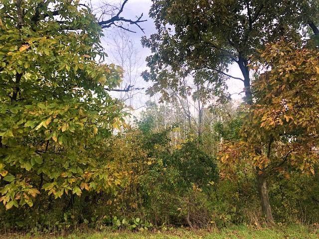 30 Acres Division Rd, Greenbush, WI 53026 (#1663999) :: Keller Williams Momentum