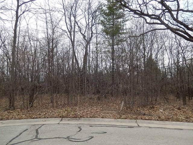 Lt13 Hickorywood Ct, Mount Pleasant, WI 53403 (#1669779) :: Keller Williams Momentum
