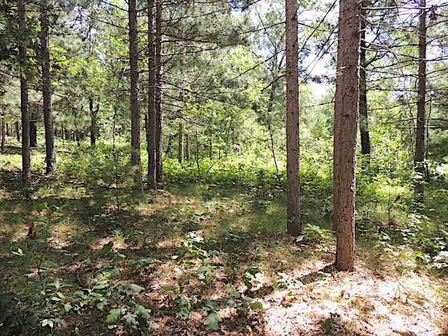 00 County Road A, Farmington, WI 54644 (#1676623) :: Tom Didier Real Estate Team