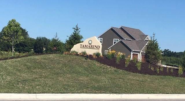 W197N5040 Tamarind Way Lt28, Menomonee Falls, WI 53051 (#1722078) :: RE/MAX Service First