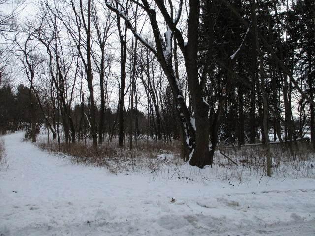 15 and 16 Blk 6 Lot 15/16 Tippecanoe Trl, Sugar Creek, WI 53121 (#1724656) :: OneTrust Real Estate