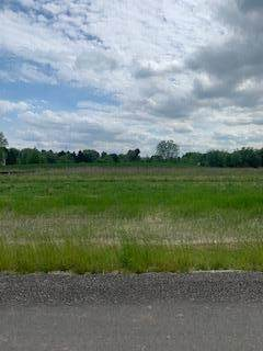 Lt33 Beverly Ln, Lisbon, WI 53089 (#1742566) :: Re/Max Leading Edge, The Fabiano Group