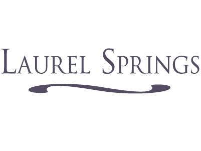 Lt108 Laurel Springs Cir - Photo 1