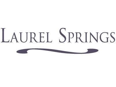 Lt109 Laurel Springs Cir - Photo 1