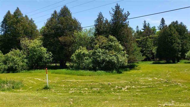 224Acres Us Highway 2, Masonville, MI 49878 (#1764938) :: Re/Max Leading Edge, The Fabiano Group