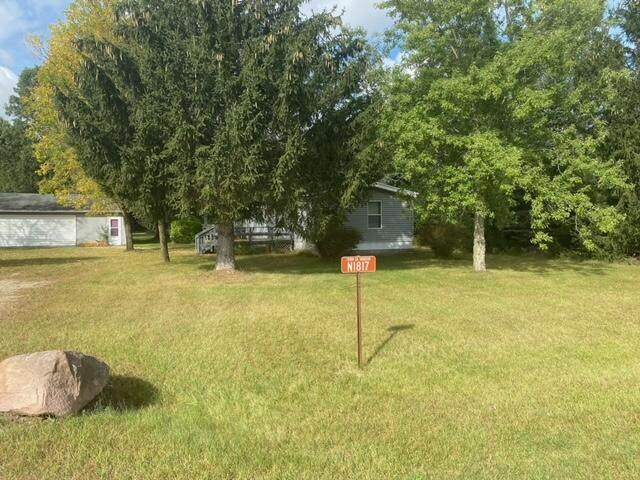 N1817 County Rd Z, Marion, WI 54982 (#1764941) :: Re/Max Leading Edge, The Fabiano Group