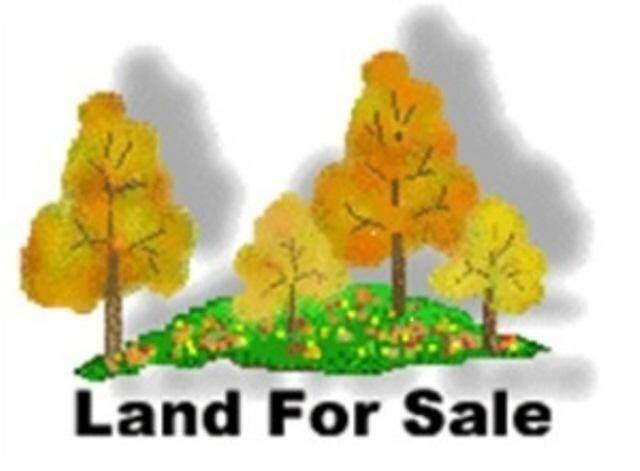 1489 Park St, Lyons, WI 53105 (#1769239) :: Ben Bartolazzi Real Estate Inc