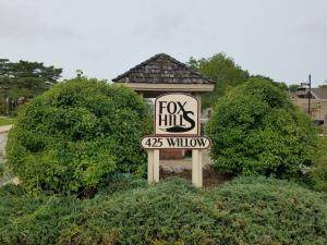 425 W Willow Ct #249, Fox Point, WI 53217 (#1709896) :: Tom Didier Real Estate Team