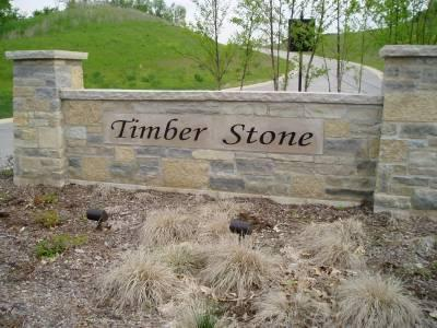 LT94 Timber Stone Subdivision - Photo 1