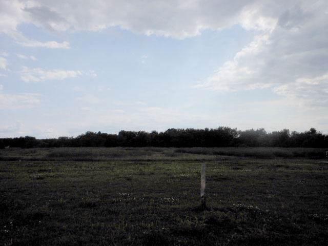 534 E Clancy St, Jefferson, WI 53549 (#1326471) :: OneTrust Real Estate