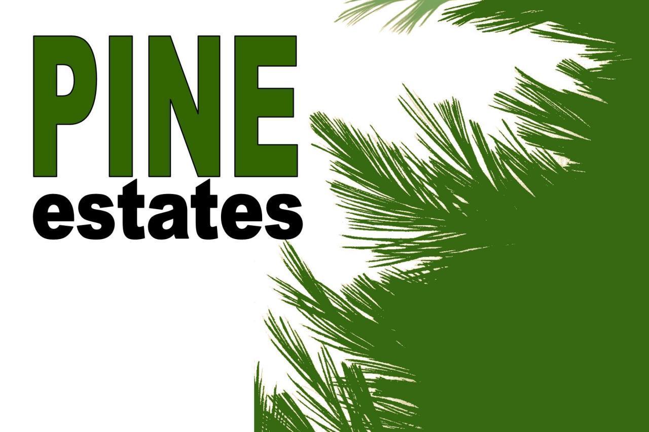 L11B1 Pine Estates - Photo 1