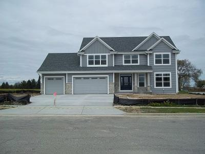 1304 Regees Rd, Mukwonago, WI 53149 (#1611292) :: Tom Didier Real Estate Team