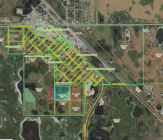 Address Not Published, Portal, ND 58772 (MLS #210313) :: Signal Realty