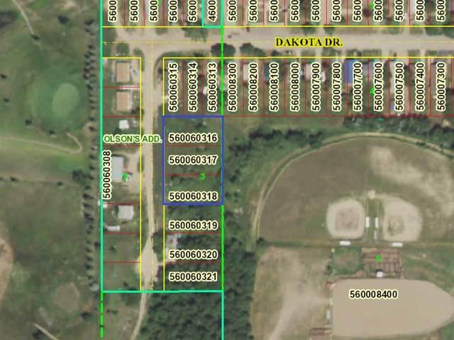 Dakota Dr, New Town, ND 58763 (MLS #211622) :: Signal Realty