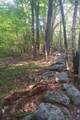 Lot 5 Forest Dr - Photo 2