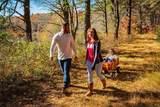 108 White Clover Trail - Photo 11