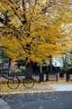 34 Tremont St - Photo 30