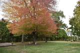 31 Chestnut Hill - Photo 33
