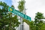 1 Dogwood Drive - Photo 10
