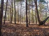 6 Woodland Rd - Photo 26