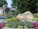 10 Pleasant Park Drive - Photo 1