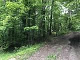 0 Access Rd 3 & Sawdust - Photo 1