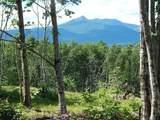 0 White Mountain Highway - Photo 1