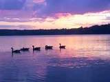 15 Matawanakee Trl - Photo 27