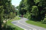 1 Mcsweeney Lane - Photo 5