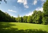 79 Wolcott Woods Lane - Photo 24