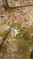 Lot 20B Wildmeadow Rd - Photo 33