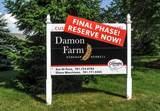 31 Damon Farm Way - Photo 1